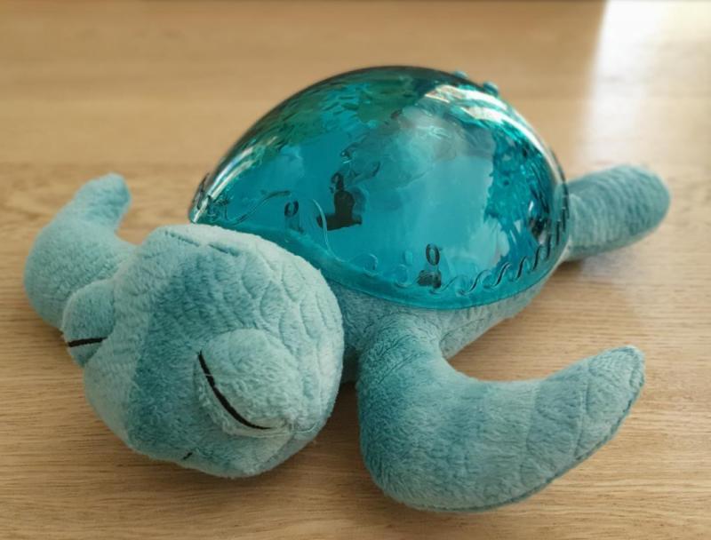 La tortue Clound B