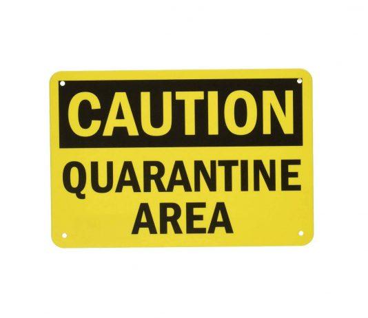 occuper les enfants pendant la quarantaine du coronavirus